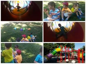 Vizita parc Iulie 2015
