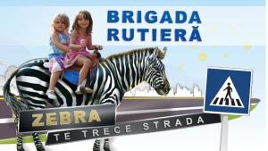 zebra_trece_strada